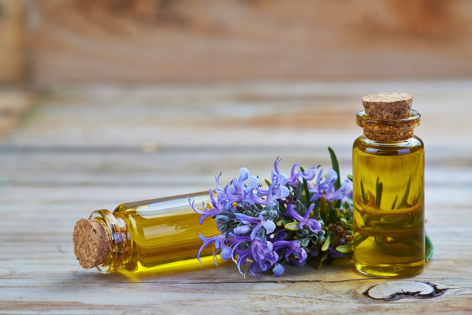 Rosemary Oil Great For Your Skin Care Routine