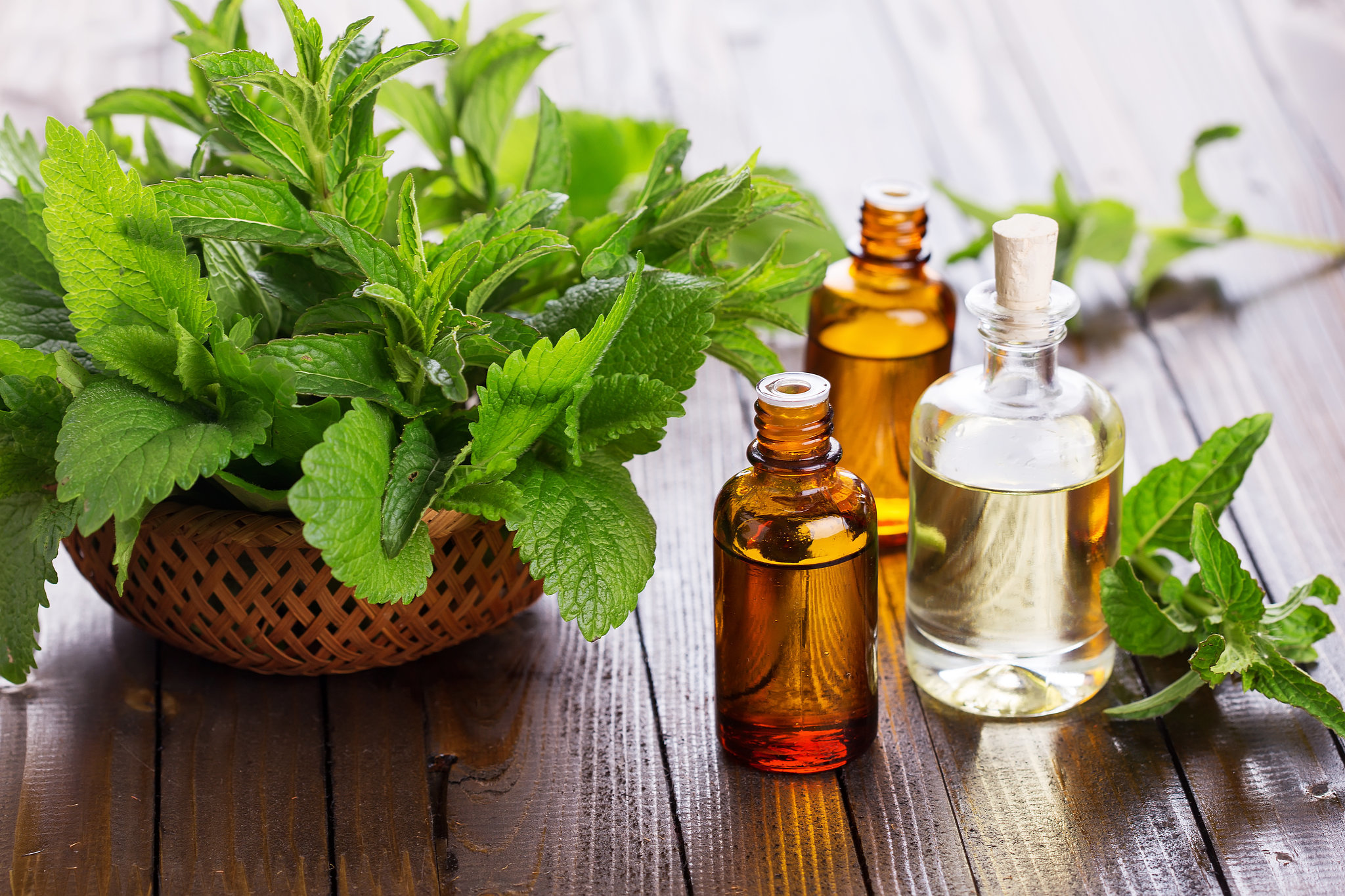 The Remarkable Benefits Of Peppermint Oil for Skin and Hair